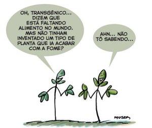 fome_transgenico